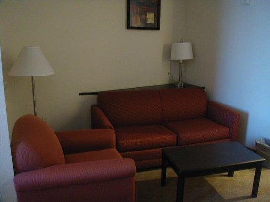 Comfort Suites Tampa Airport North: Suite