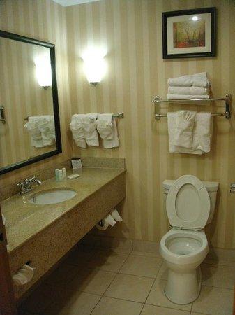 Comfort Suites Tampa Airport North: Bath overview