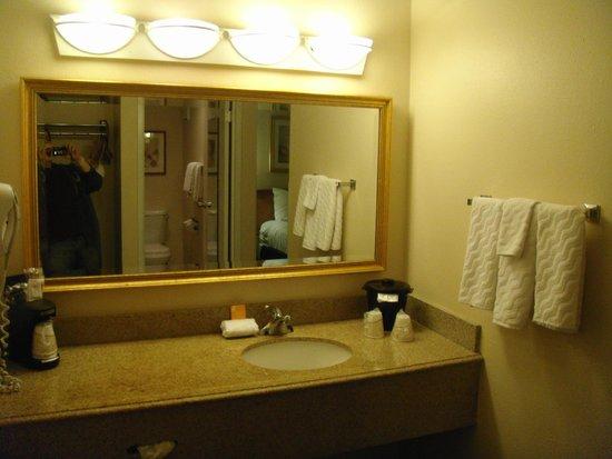 La Quinta Inn & Suites Tampa Fairgrounds - Casino: Counter and mirror