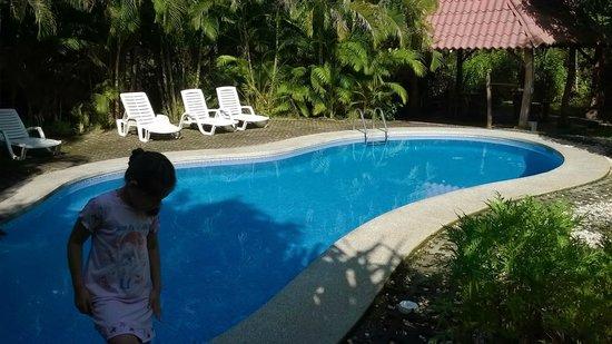 Blue Jay Lodge: vista de la pequeña piscina