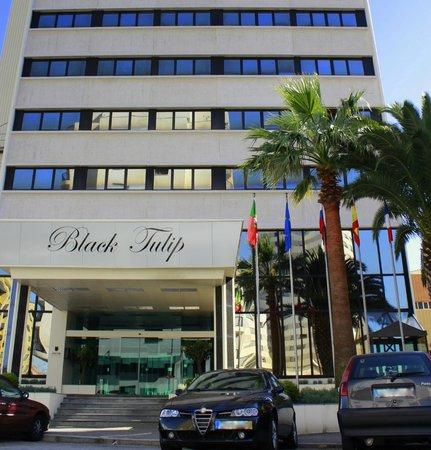 Hotel Black Tulip