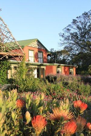 Outeniqua Moon Percheron Stud and Guest Farm: Vue extérieure
