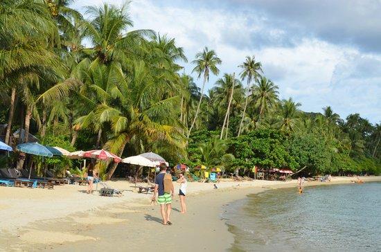 Chaipura Resort: Strand