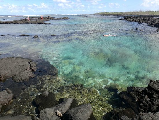 Kapoho Tide Pools: Wai'Opae Tide Pools, just south of Kapoho Bay