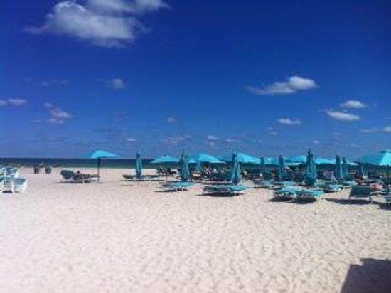 The Palms Hotel & Spa: praia do Palms