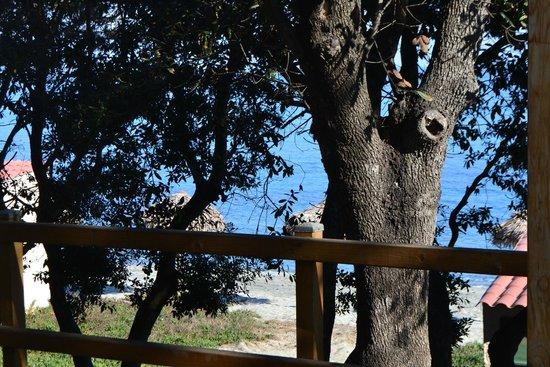 Riva Bella Naturiste Camping: Vue de la chambre