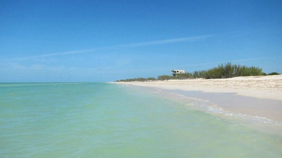 Casa de Celeste Vida : Absolutely divine morning walk on the beach.