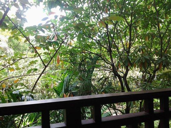 Le Murraya: вид с балкона