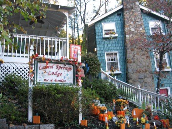 Laurel Springs Lodge B&B : Laurel Springs B&B