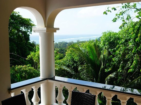 Albizia Lodge Reef Estate: View from the terrace