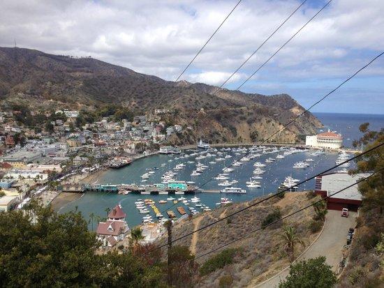 Santa Catalina Island Interpretive Center: Isla Santa Calina desde las Alturas