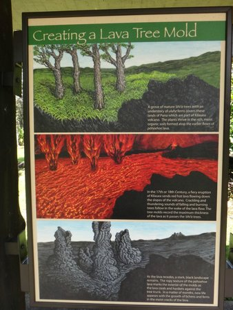Lava Tree State Park: Informative sign at the monument trailhead