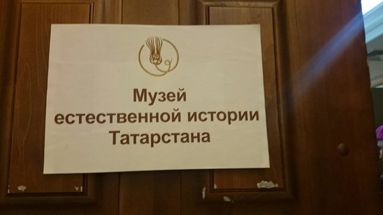 Natural History of Tatarstan Museum: Музей естественной истории