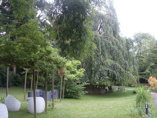 Restaurante le jardin des plumes fotograf a de le jardin for Le jardin des plumes