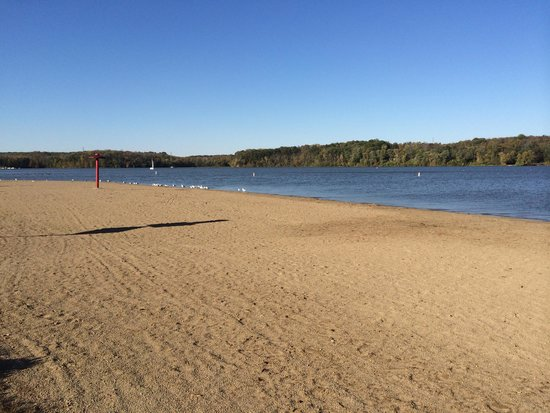 Hueston Woods Lodge and Conference Center : Beach area near pet beach