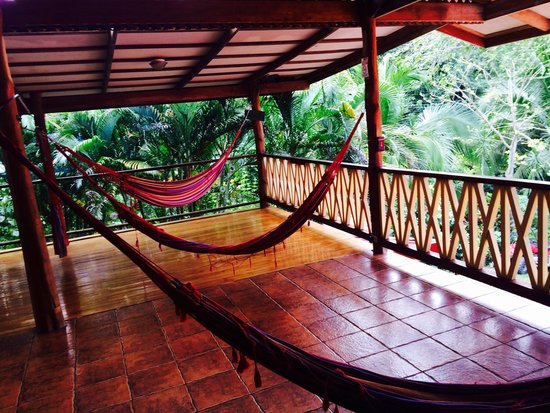 Casa Zen Guest House & Yoga Center: The Yoga Deck is a Hammock Deck in off hours!