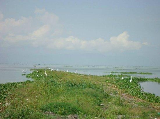 Access lake chapala
