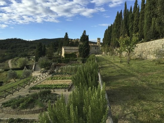 Rosewood Castiglion Del Bosco : CdB's lush and beautiful vegetable patch