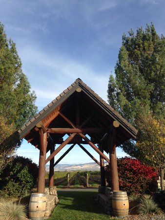 Basel Cellars Estate Winery: A view from their tasting room