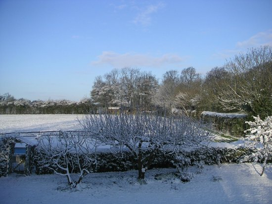 Little Saltwood Farm B&B: Snow at Little Saltwood Farm