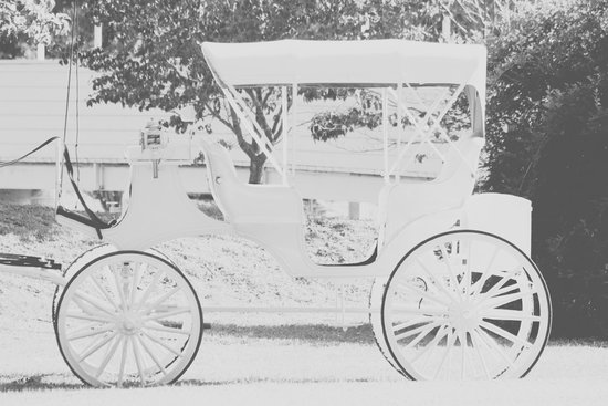The Donoho Hotel: Our beautiful white buggy.