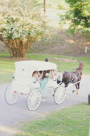 The Donoho Hotel: Our horse and buggy.