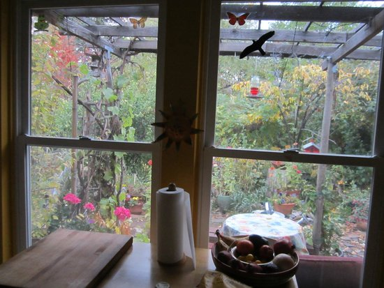 The Painted Hills Vacation Rentals: View of the garden from the kitchen.