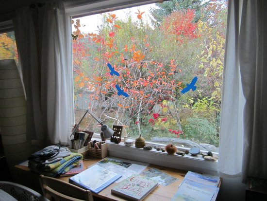 The Painted Hills Vacation Rentals: View from the living area picture window. Beautiful Fall colors...lots of birds!