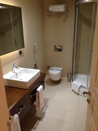 Sala da bagno - Picture of Miracle Istanbul Asia, Istanbul ...