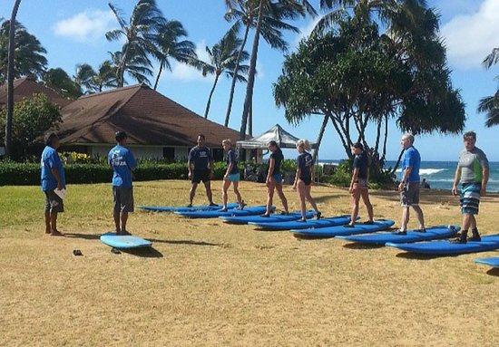 Aloha Surf Lessons