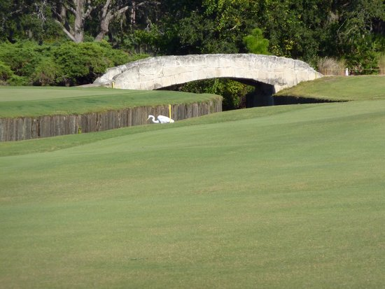 Grand Cypress Golf Club: St. Andrews