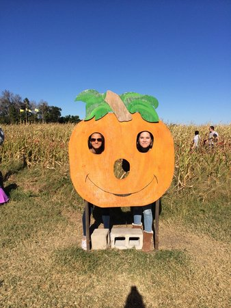 Long & Scott Farms: Corn maze is the best but other fun things to do as well....