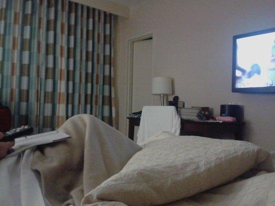 Miami International Airport Hotel: quarto