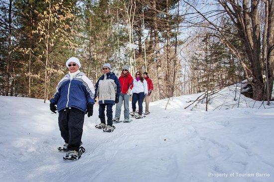 Barrie, Canada: Snowshoeing at Hardwood Ski & Bike
