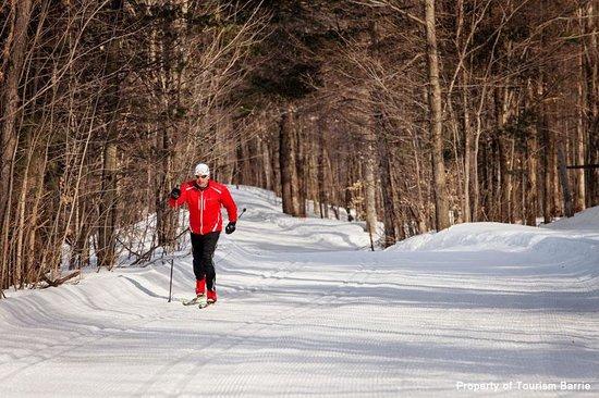 Barrie, Kanada: Cross Country Skiing