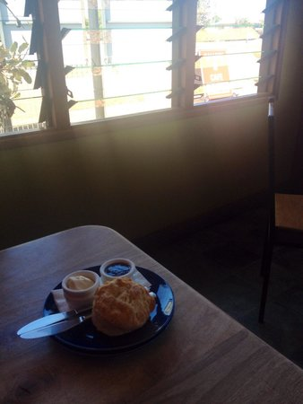 Tolga Woodworks & Cafe: Try the scones!