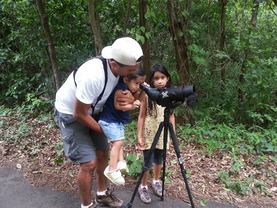 Costa Rica Green Life Tours: Bird watching - Santa Rosa National Park