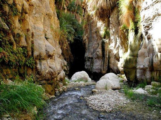 Almajali Tours - Adventures & Day Tours