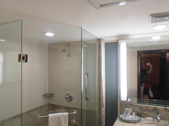 Torreon Marriott Hotel : Baño