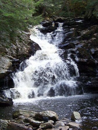 Wahconah Falls State Park: the falls