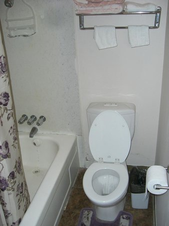 Glass Slipper Inn: Bathroom