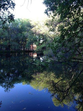 Lo Lo Mai Springs pond