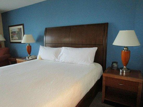 Hilton Garden Inn Albany: bed