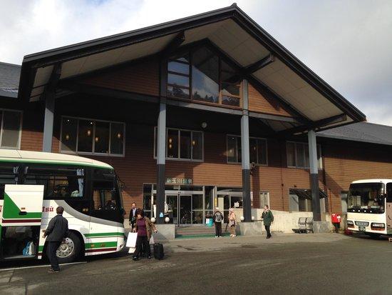 New Tamagawa Onsen: バスがたくさん!