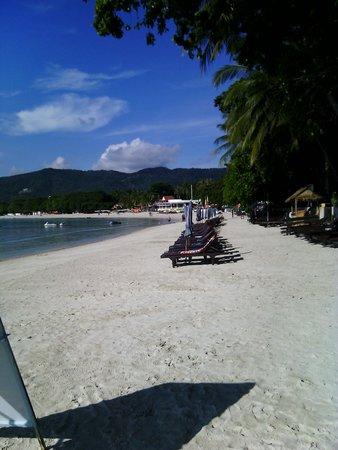 P&P Samui Resort: chaweng beach