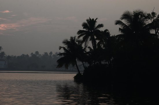 Blue Waters Cherai: VIEW OF BACK WATERS DURING SUN RISE