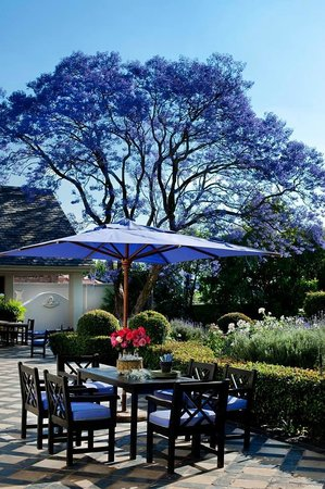 33 Melville Road : Patio where breakfast is served if you prefer. Great in summer