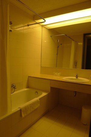Amalia Hotel Olympia: Usual bathroom with tight space for shower
