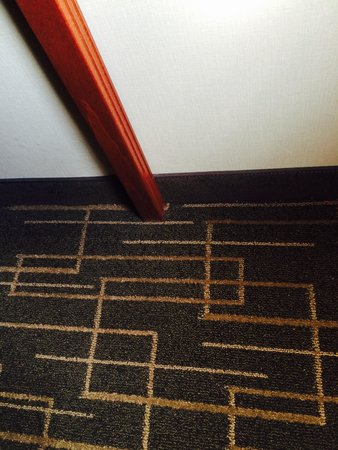 Best Western Airport Inn: Clean even by baseboard