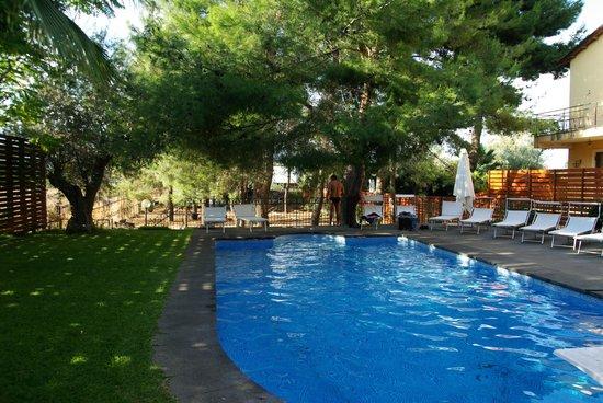 OttoMood B&B: Le jardin et la piscine